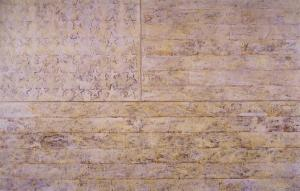Jasper Johns, White Flag (1955)